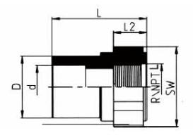 PP-H 承插管件 内螺纹管接头